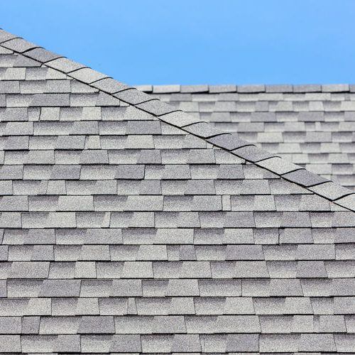 An Up Close Picture of Shingles.